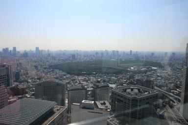 Aussicht vom Tokyoter Rathaus auf den Yoyogi Park