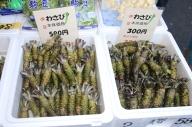 Rund um den Fischmarkt Wasabi