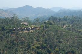 Sri Lanka 98 Acres
