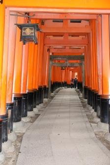 Fushimi Inari-Taisha Toriitunnel