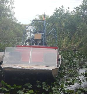 Florida Everglades Airboat