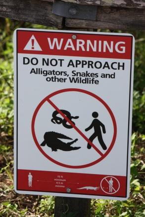Florida Everglades Warnschild