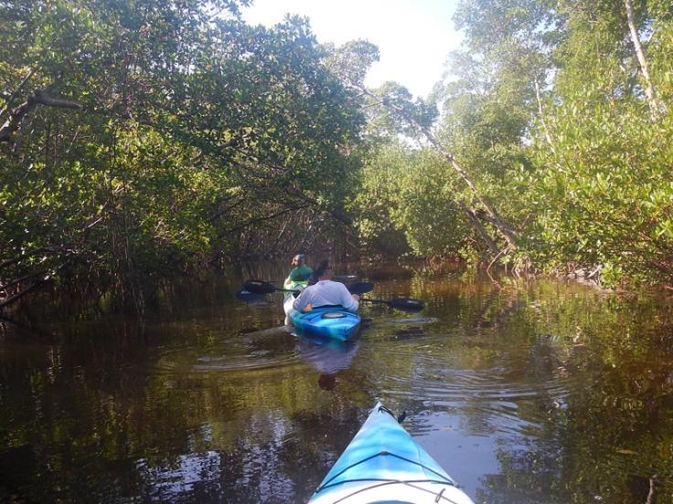 Florida Sanibel Kayak Ding Darling NP