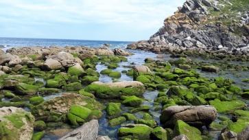 Spanien Galizien Islas Cies Steine