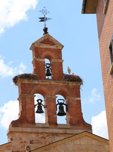 Spanien Zamora nistende Störche
