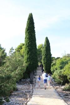 Kroatien Lokrum Weg zum Fort Royal