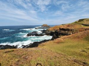 Phillip Island The Nobbies Walk