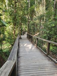 Fraser Island Central Station Walk