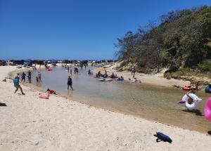 Fraser Island Eli Creek