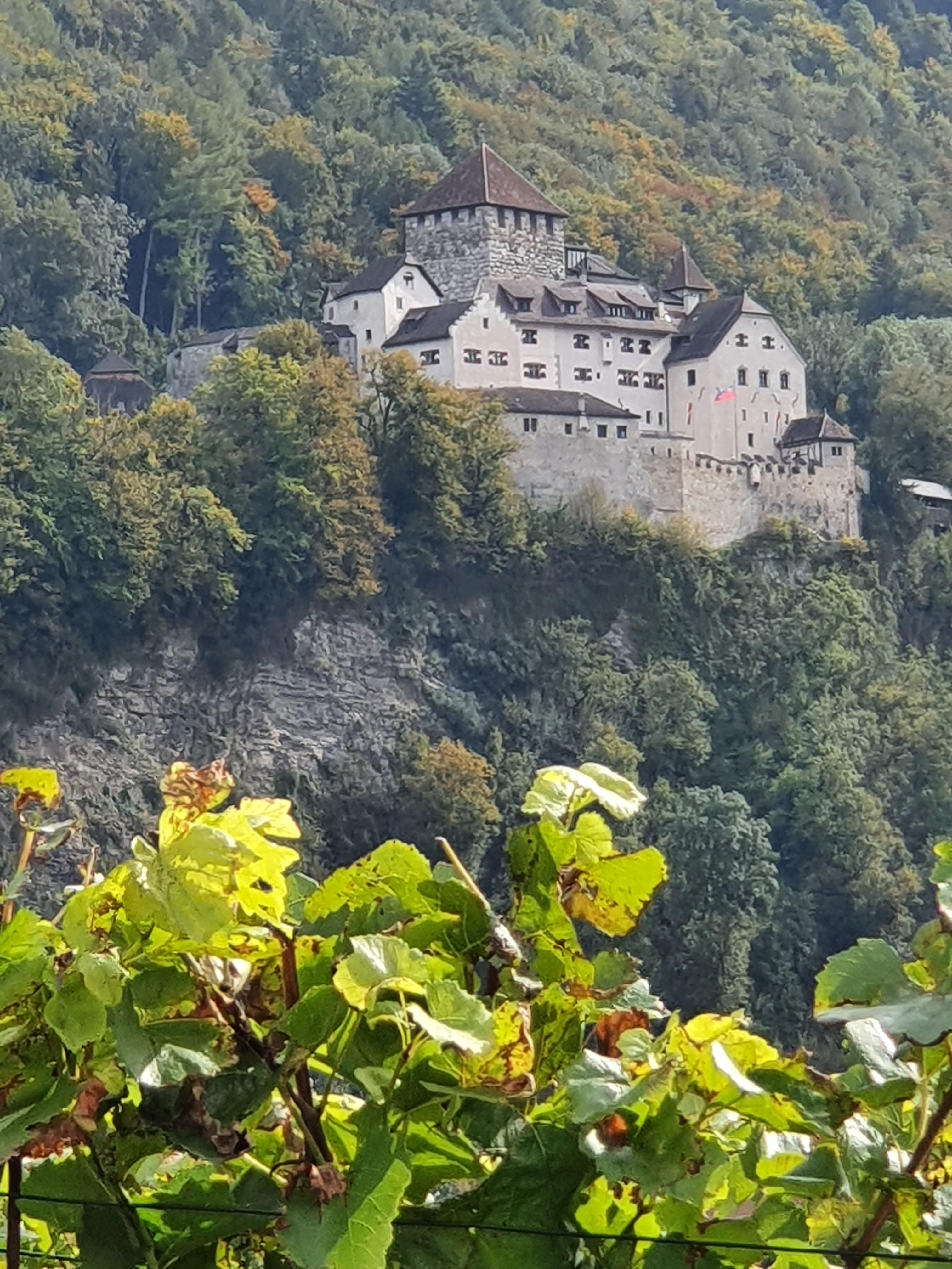 Liechtenstein Burg