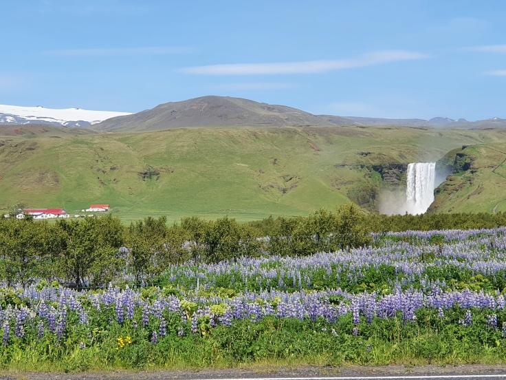 Island Skogafoss mit Gletscher Eyjafjöll im Hintergrund
