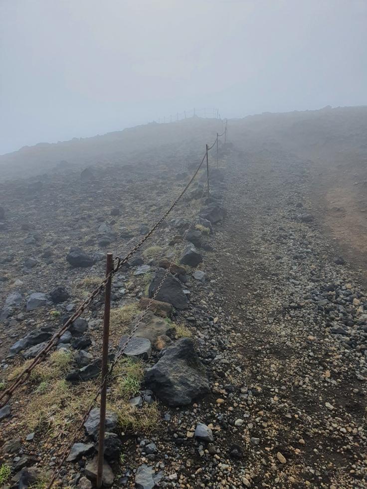 Island Dyrholaey Aufstieg im Nebel