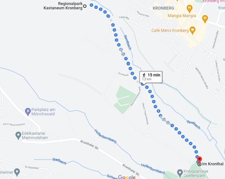 Fußweg Kronthal Kastaneum Kronberg
