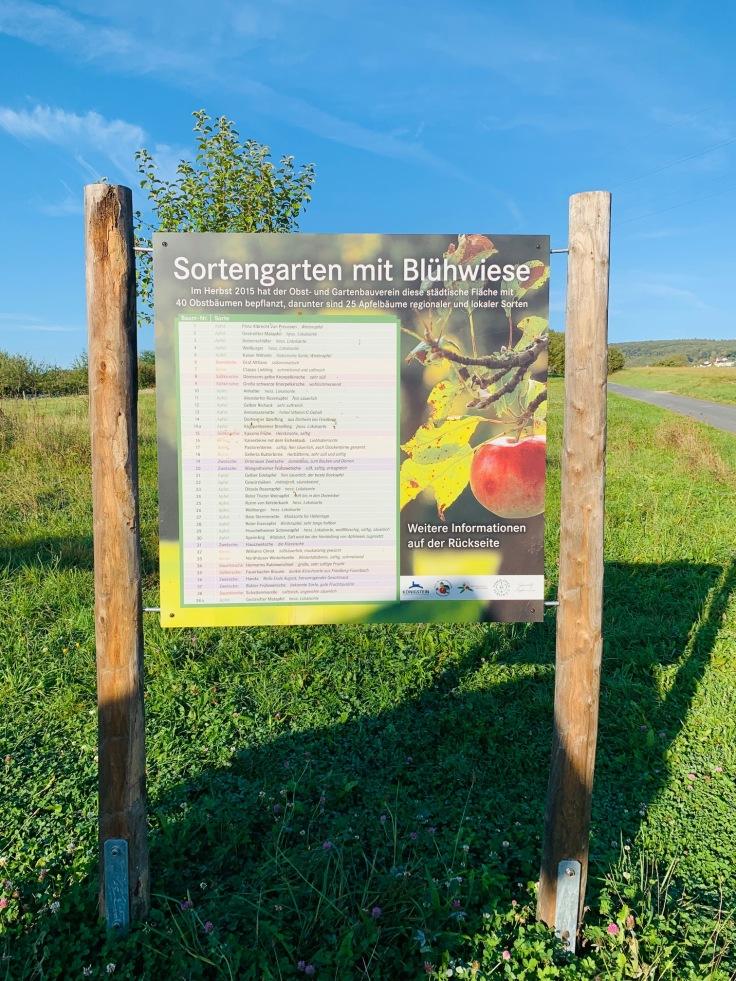 Königstein Mammolshain Apfel-Sortengarten