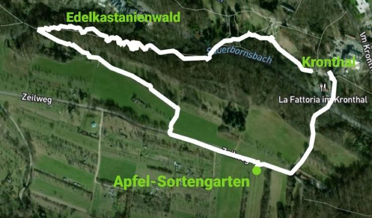 Rundweg Kronthal - Edelkastanienwald - Apfel-Sortengarten